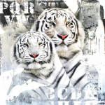 Tigers_54086961522c2.png